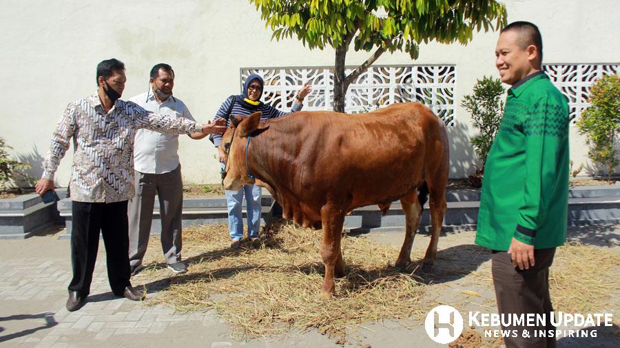 Wabup Arif Sugiyanto saat penyerahan sapi kurban. (Foto: Padmo-KebumenUpdate)