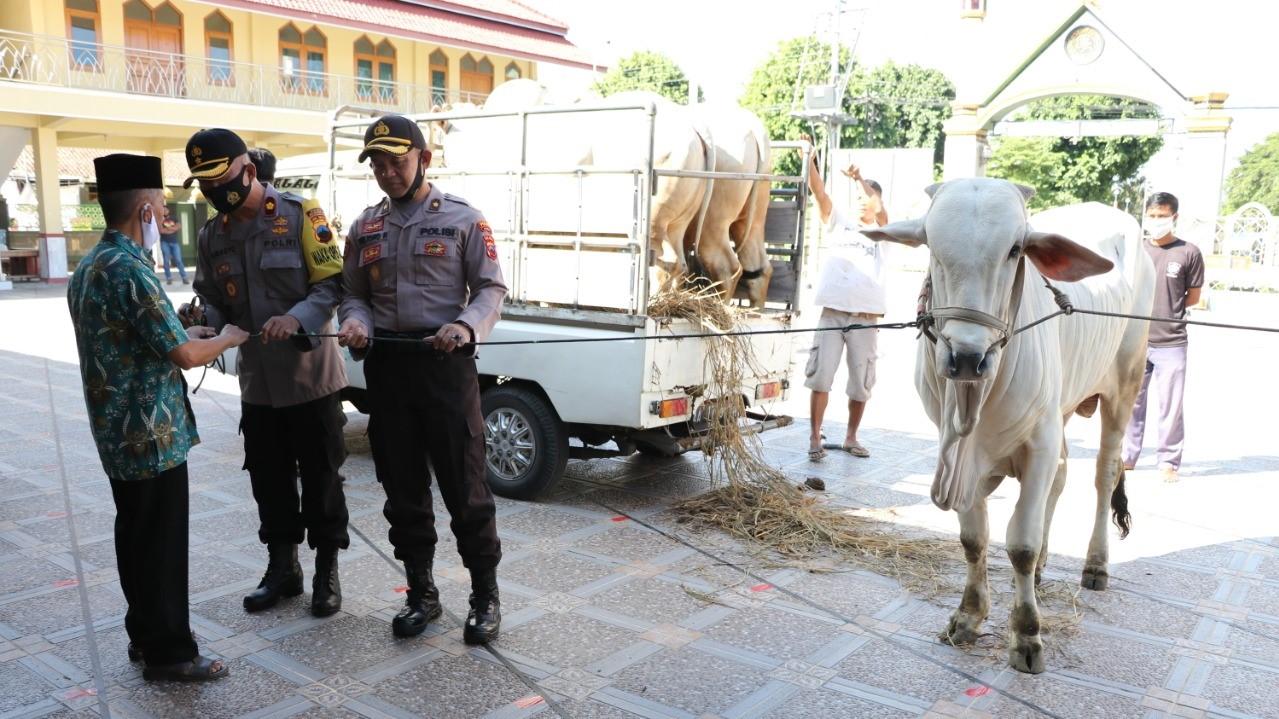 Waka Polres Kompol Subagyo menyerahkan sapi ke takmir Masjid Agung Kebumen. (Foto: Polres Kebumen)